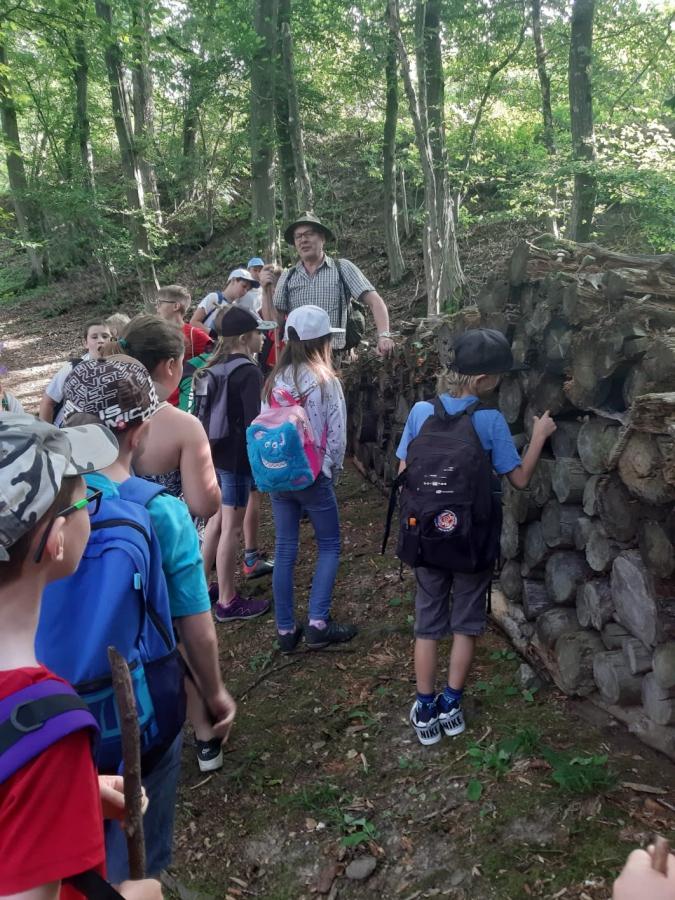 Waldpädagogiktag am 13. Juni 2019